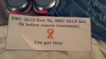 BWC back bib